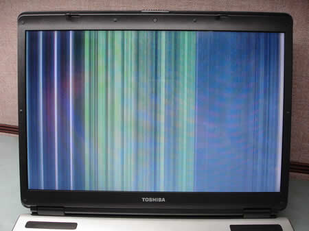 video chip